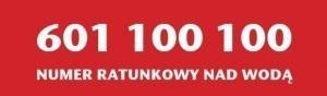 601 100 100